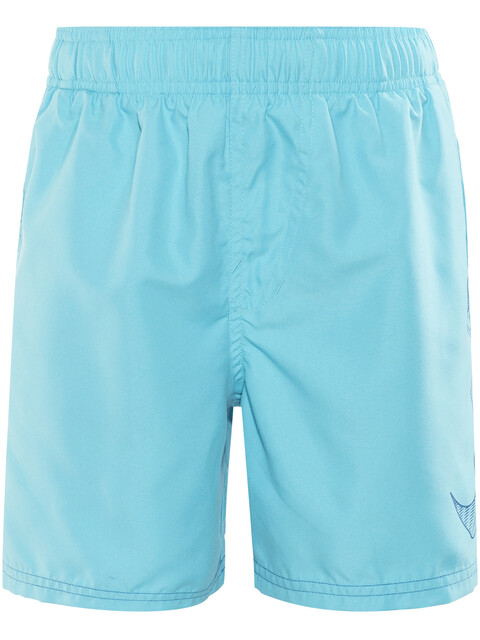 "Nike Swim Big Swoosh Logo Volley Shorts Boys 4"" Chlorine Blue"
